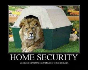 lion security systems